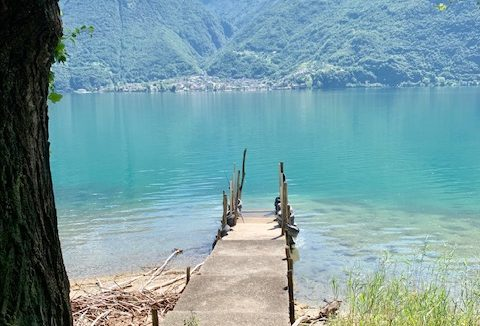 FOR SALE – VILLA IN FRONT OF THE LAKE – NATURAL OASIS PLAN OF SPAIN – SORICO – LAKE COMO – CL 826